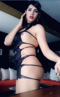 anal escort, cim cif travesti escort, oral gay escort, dik kalçalı travesti